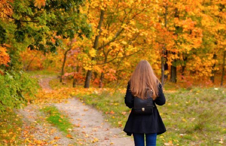 Sonuncu yürüyüş - Elladanın hekayəsi